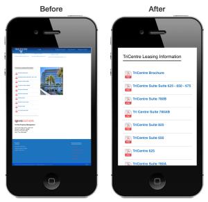 Mobile Responsive Web Site